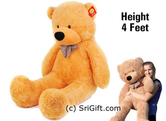 More than height 3.5 feet big teddy bear. Free Delivery anywhere in Sri Lanka.